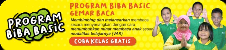 biba-basic-1.png